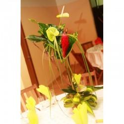 Composition florale Zandoli